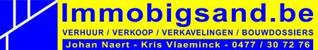 Logo Immo Bigsand